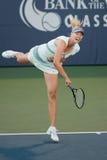 Maria Sharapova speelt bij de Reis WTA Royalty-vrije Stock Afbeeldingen