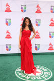 Maria Teresa Interiano arrives at the 12th Annual Latin GRAMMY Awards Royalty Free Stock Image