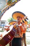 Mexico City. A mariachi band performs on a Trajinera boat at Xochimilco on March 21, 2014 in Mexico City Stock Photography
