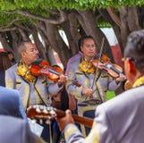 Mariachi Band Violin Players Jardin San Miguel de Allende Mexico Stock Photos