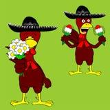 Mariachi mexicain set2 de poulet Image stock