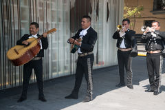 Mariachi op Plein Garibaldi in Mexico-City royalty-vrije stock afbeelding