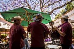 Mariachi piosenkarzi, Meksyk, Meksyk zdjęcia royalty free