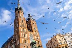 Mariacki kyrka, Krakow, Polen, Europa royaltyfria bilder