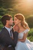 Mariage élégant sur une nature Image libre de droits