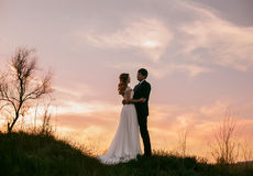 Mariage élégant sur une nature Photographie stock libre de droits