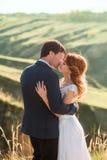 Mariage élégant sur une nature Photo stock