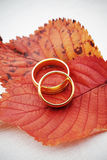Mariage d'automne image stock