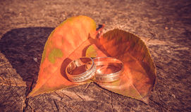 Mariage d'automne Photo stock