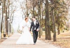Mariage d'automne de marié et de jeune mariée Photos stock