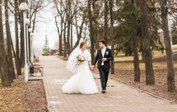 Mariage d'automne de marié et de jeune mariée Image stock