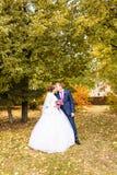 Mariage d'automne en parc, jeunes mariés photo libre de droits