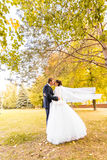 Mariage d'automne en parc, jeunes mariés photos libres de droits