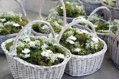 Mariage de fleur Image libre de droits