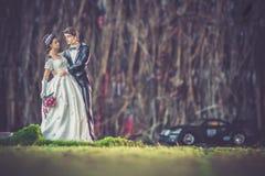 Mariage de jouet Photographie stock libre de droits