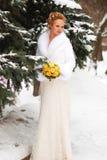 Mariage de l'hiver Photographie stock libre de droits