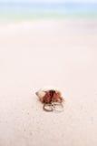 Mariage de plage tropical Images stock