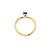 Mariage Diamond Ring Photo libre de droits