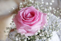 Mariage Rose Image libre de droits