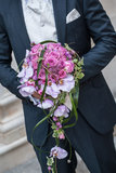 Mariages homosexuels Image libre de droits