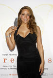 Mariah Carey Fotografia de Stock Royalty Free
