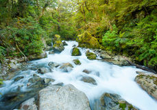 Marian Creek Royalty Free Stock Images