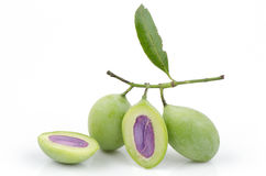 Marian Plum (Bouea macrophylla Griffith). Stock Images