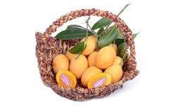 Marian Plum e Plum Mango imagem de stock
