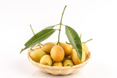 Marian Plum, Plum Mango (Bouea macrophylla Griffith). Stock Photo