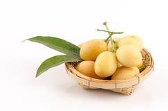 Marian Plum, Plum Mango (Bouea macrophylla Griffith) Royalty Free Stock Images