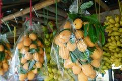 Marianische Pflaume oder thailändische Fruchthand Plango gezeichnet Stockbild