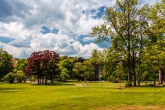 Marianske Lazne公园看法  免版税库存照片