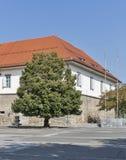 Maribor Grad, Slovenia Royalty Free Stock Image