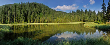 Marichaika lake among fir trees panorama Stock Images
