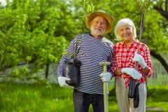 Marido aposentado e esposa que guardam árvores e posição da pá no jardim foto de stock royalty free