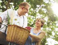 Marido da esposa dos pares que data o conceito do amor do abrandamento fotografia de stock royalty free