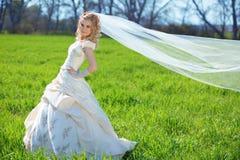 Mariée posant dans le domaine Photos stock