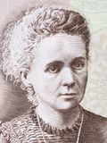 Marie Sklodowska Curie-Porträt stockfotografie