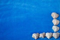 Mariene achtergrond Stock Afbeeldingen