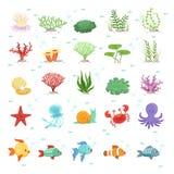 Mariene dieren, visseninzameling en onderwaterplanten Aqua wilde fauna Vector illustratie vector illustratie