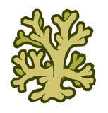 Mariene koraal gestileerde vectorillustratie Royalty-vrije Stock Foto's