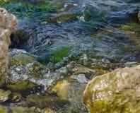 Mariene rotsachtige kust zonder mensen stock afbeeldingen