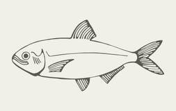Mariene vissen Royalty-vrije Stock Afbeelding