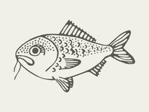 Mariene vissen met een snor Stock Foto