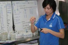 Mariene wetenschapper, Thailand. Stock Afbeeldingen