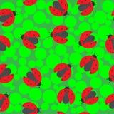 Marienkäfer auf einem grünen Hintergrund lizenzfreie abbildung