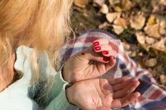 Marienkäfer, der auf der Hand des Mädchens sitzt Lizenzfreies Stockbild