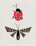Marienkäfer u. Schmetterling Stockfoto