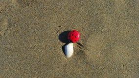 Marienkäfergeschichte: Wochenende, an, das er auf den Strand setzt Stockbilder