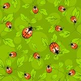 Marienkäfermuster - buntes Muster des Marienkäfers und der Blätter Lizenzfreies Stockfoto